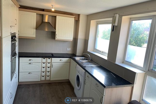 Thumbnail Semi-detached house to rent in Britten Close, Colchester