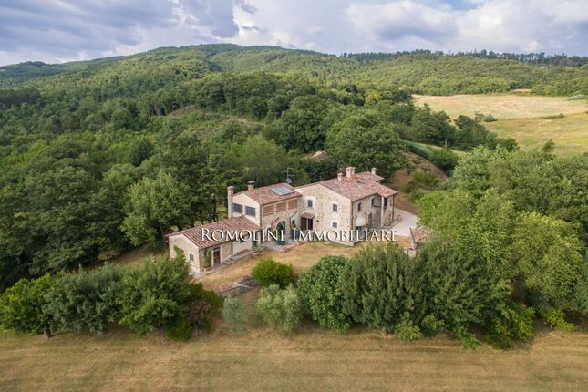 Land for sale in Sansepolcro, Tuscany, Italy