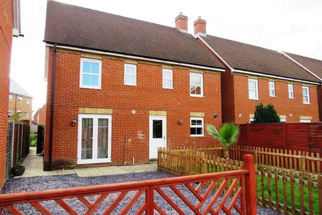 Thumbnail Detached house to rent in Daisy Walk, Sittingbourne