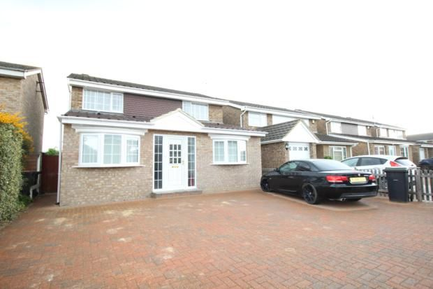 Thumbnail Detached house to rent in Widecombe Close, Bedford