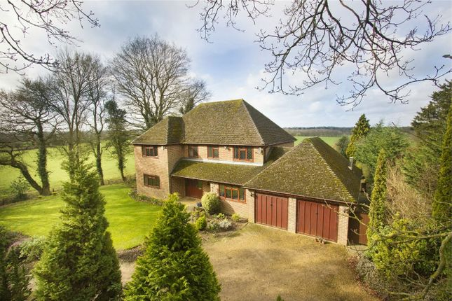 Thumbnail Detached house for sale in Hazeley Heath, Hook