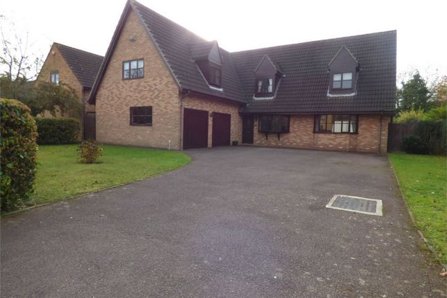 Thumbnail Detached house for sale in Ashleigh, Orton Wistow, Peterborough