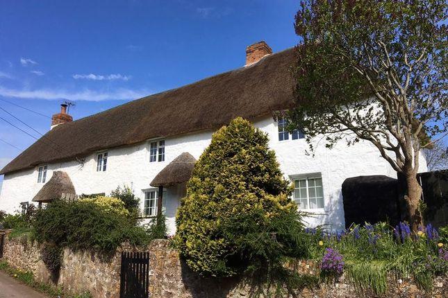 Thumbnail Cottage for sale in Sampford Brett, Taunton