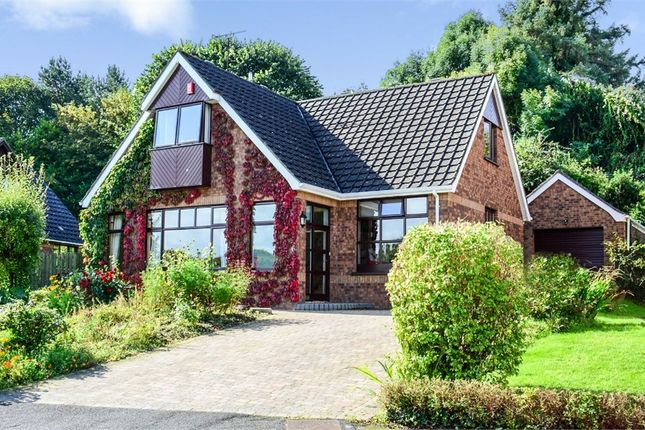 Thumbnail Detached house for sale in Orchard Way, Downpatrick, County Down