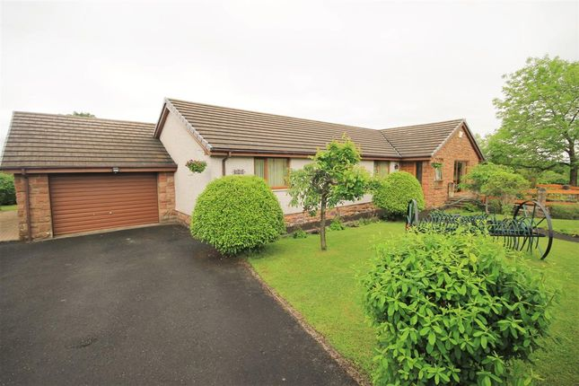 Thumbnail Bungalow for sale in Watersaugh, Wishaw Low Road, Cleland