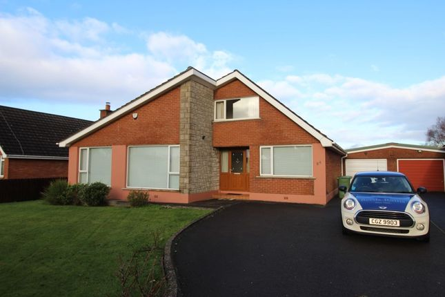 Thumbnail Detached house to rent in Silverbirch Road, Bangor