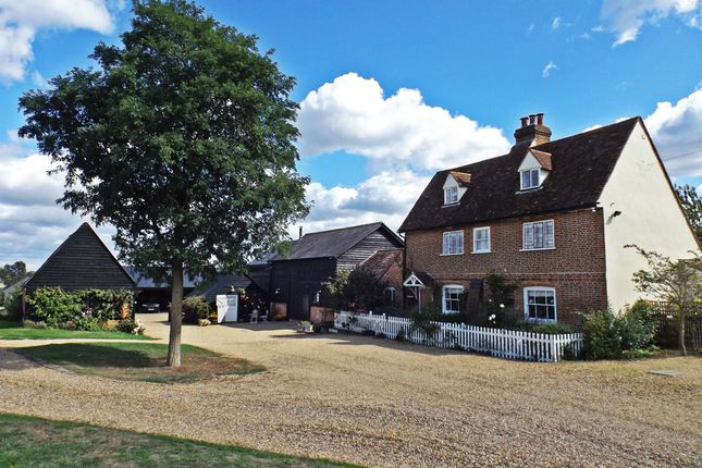 Thumbnail Equestrian property for sale in Thistley Lane, Gosmore, Hitchin