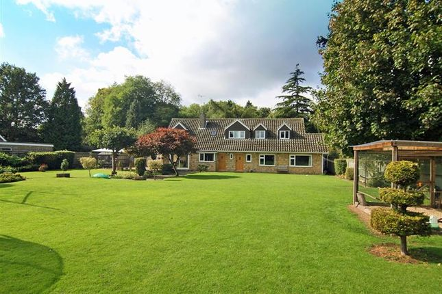6 bedroom property for sale in Graeme Road, Sutton, Peterborough