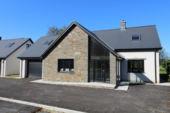 Thumbnail Detached house for sale in Lampeter Road, Tregaron