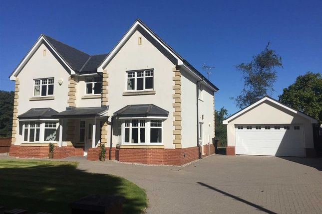 Thumbnail Detached house to rent in Connah's Quay Road, Northop, Mold