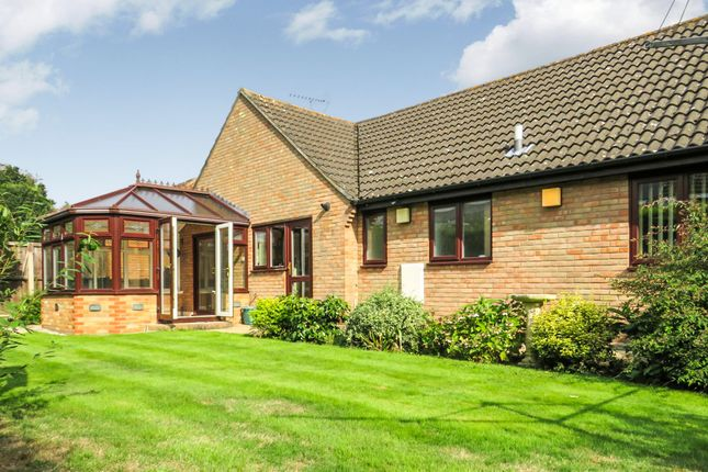Thumbnail Detached bungalow for sale in Woodview Close, Colchester