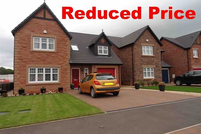 Detached house for sale in Birchwood Way, Dumfries