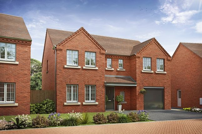 "Thumbnail Detached house for sale in ""The Edlingham "" at Brickburn Close, Hampton Centre, Peterborough"