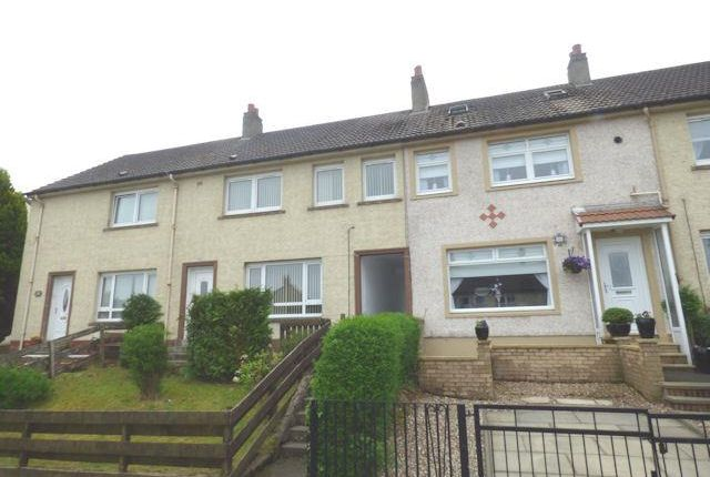 Thumbnail Terraced bungalow to rent in Primrose Avenue, Larkhall
