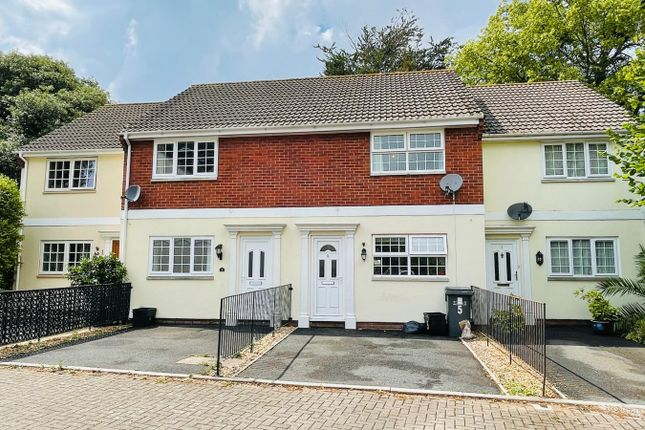 Thumbnail Terraced house to rent in Charlotte Close, Torquay, Devon