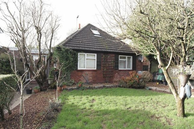 Thumbnail Detached bungalow to rent in Whyteladyes Lane, Cookham, Maidenhead