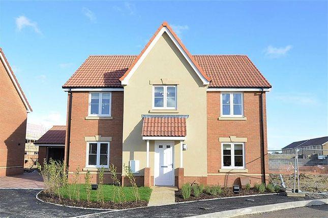 Thumbnail Detached house for sale in Parsonage Road, Hilperton, Trowbridge