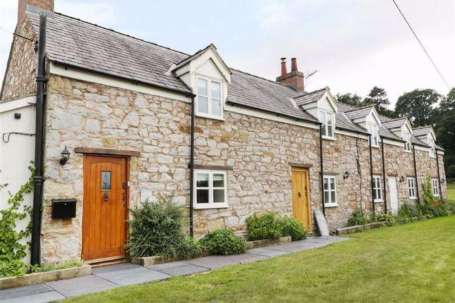 2 bed cottage to rent in Bryn Road, Gwernaffield, Flintshire CH7