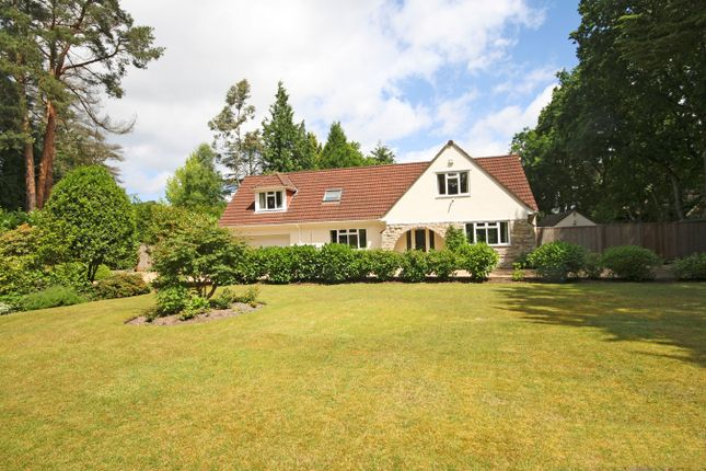 Thumbnail Property for sale in Avon Castle Drive, Avon Castle, Ringwood