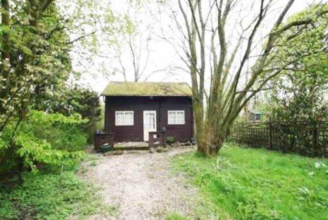 Thumbnail Lodge to rent in Tynewydd Farm, Nantybwch