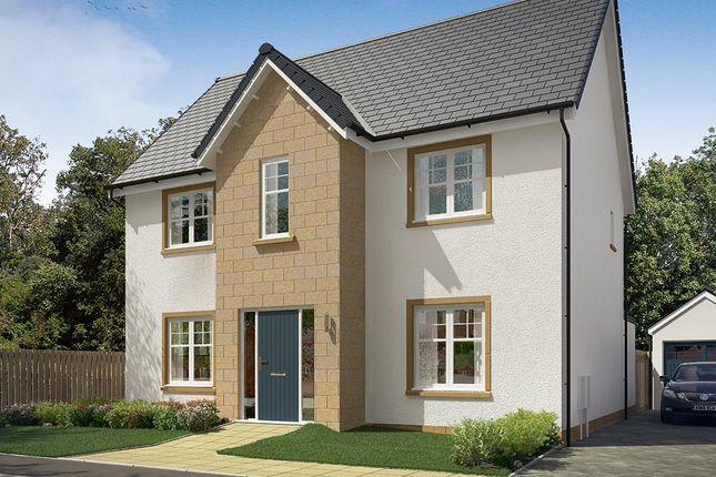 """Thumbnail Detached house for sale in """"The Danbury"""" at Vert Court, Haldane Avenue, Haddington"""