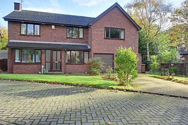 Thumbnail Detached house for sale in Tall Trees, Hessle
