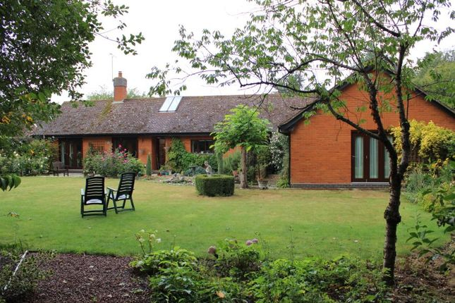 Thumbnail Bungalow for sale in Brockford, Stowmarket, Suffolk