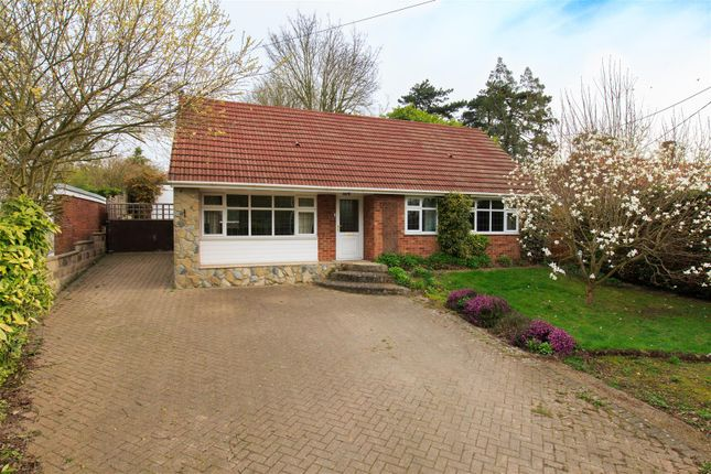 Thumbnail Detached house for sale in The Street, Hapton, Norwich