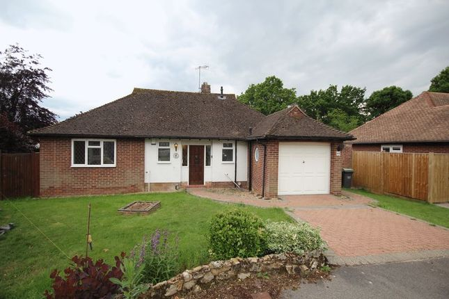 Thumbnail Detached bungalow to rent in Knowsley Way, Hildenborough, Tonbridge