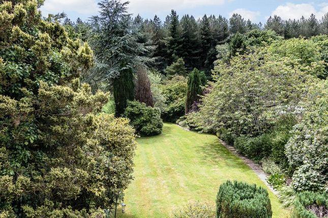 Rear Garden of North Baddesley, Southampton SO52