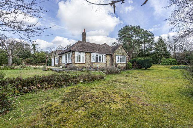 Thumbnail Detached bungalow for sale in Woodpecker Lane, Storrington, West Sussex