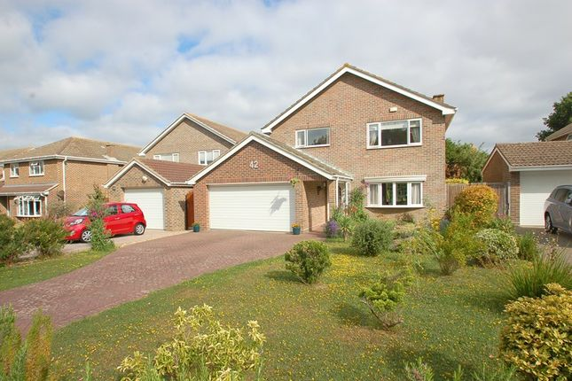 Thumbnail Detached house for sale in Fort Road, Alverstoke, Gosport