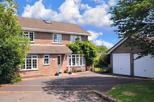 Thumbnail Detached house for sale in The Orchard, Newton, Swansea
