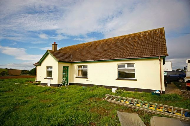Thumbnail Detached house for sale in Ballygarvigan Road, Portaferry, Newtownards, County Down