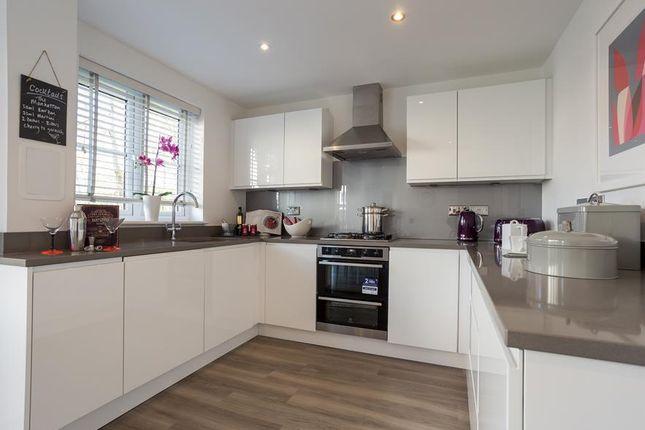 """Thumbnail Detached house for sale in """"Delgattie"""" at Drumpellier Avenue, Coatbridge"""