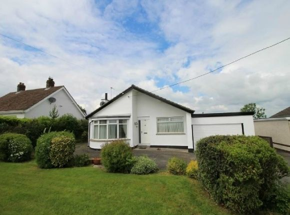 Thumbnail Detached bungalow to rent in Drumlough Road, Hillsborough