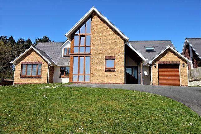 Thumbnail Detached house for sale in Caer Wylan, Llanbadarn Fawr, Aberystwyth