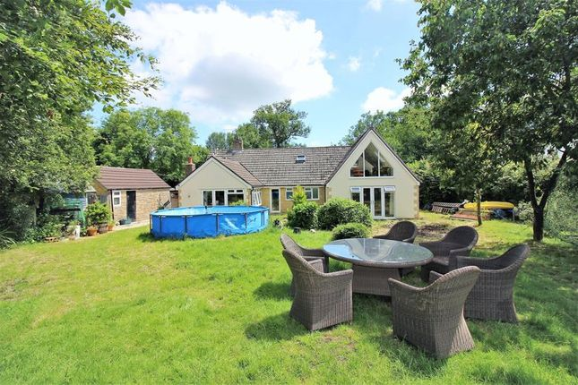 Thumbnail Detached bungalow for sale in Ambleside, Nimmer, Nr Chard, Somerset