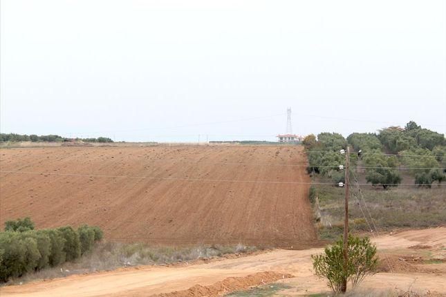 Thumbnail Land for sale in Agios Mamas, Chalkidiki, Gr