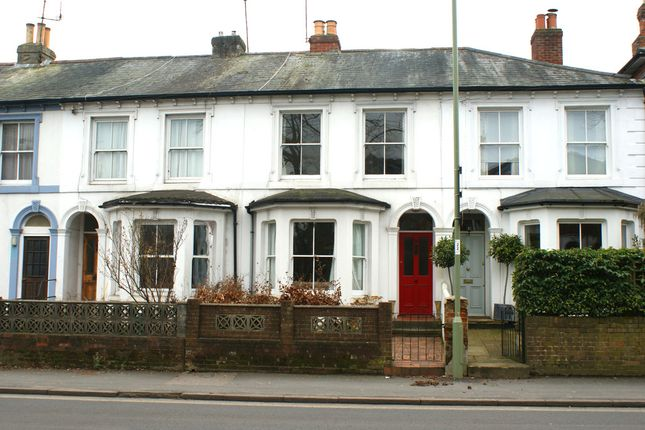 Thumbnail Terraced house to rent in Stockbridge Road, Winchester