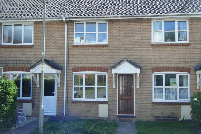 Thumbnail Property to rent in Walnut Court, Faringdon