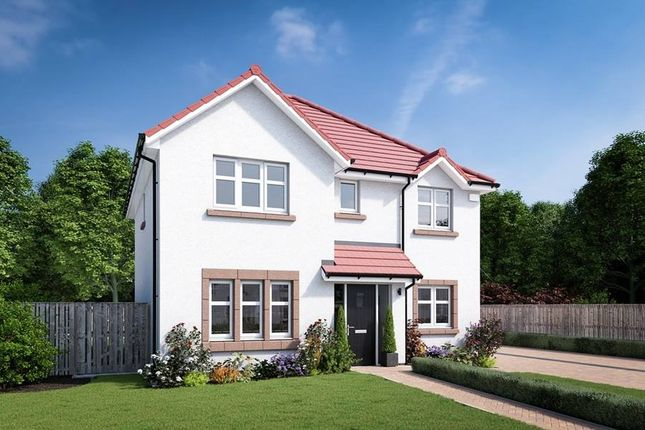 "Thumbnail Detached house for sale in ""The Blair"" at Edinburgh Road, Belhaven, Dunbar"