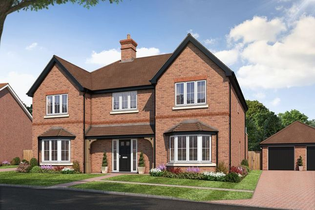 Thumbnail Detached house for sale in The Rudgwick, Amlets Place, Cranleigh