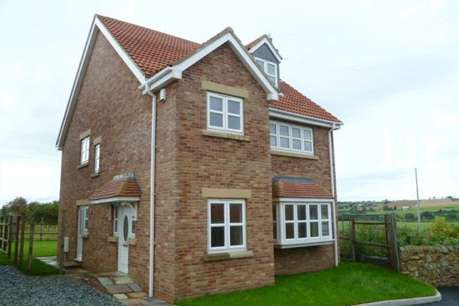 Thumbnail Detached house to rent in Valley View, Witton Park, Bishop Auckland