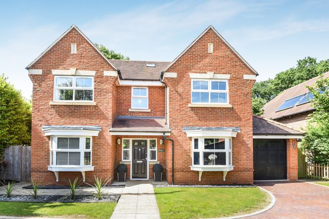 Thumbnail Detached house for sale in Birch Lane, Mortimer Common, Reading