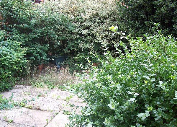 Garden of Wycliffe Road, Northampton NN1