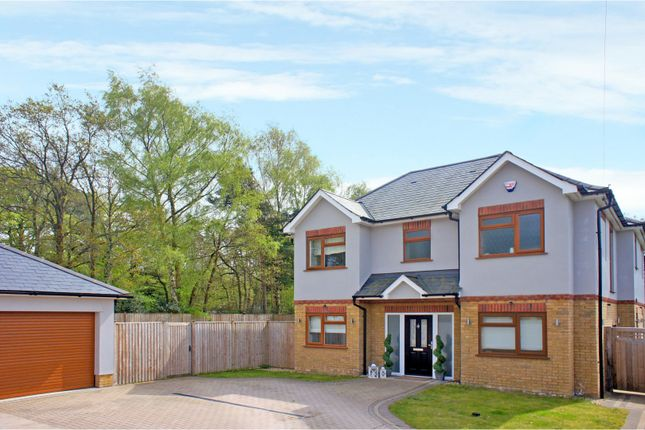 Thumbnail Detached house for sale in Salisbury Terrace, Mytchett