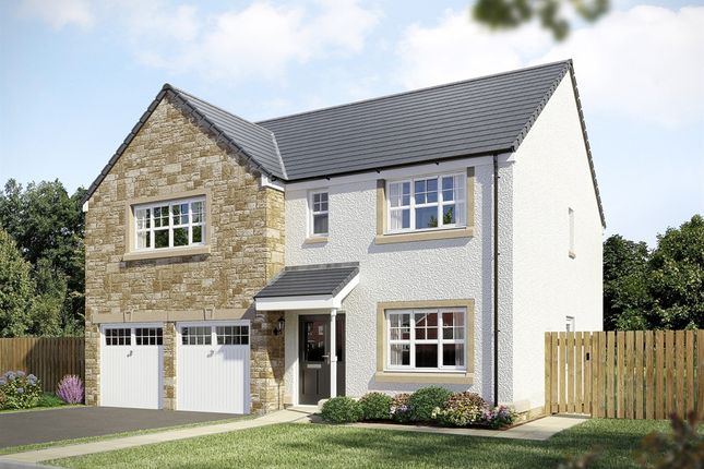 "Thumbnail Detached house for sale in ""The St Andrews "" at Geesmuir Gardens, Falkirk"