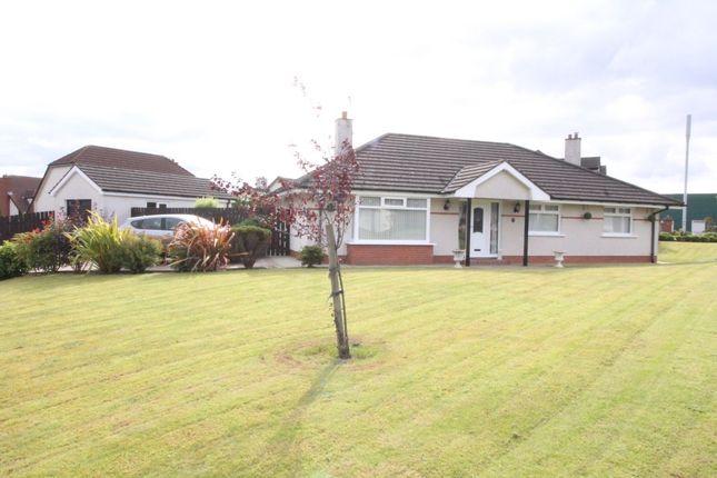 Thumbnail Bungalow for sale in Brackenridge, Greenisland, Carrickfergus