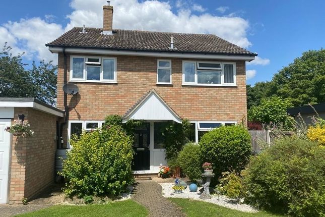 Thumbnail Detached house for sale in Clay Hall Place, Acton, Sudbury